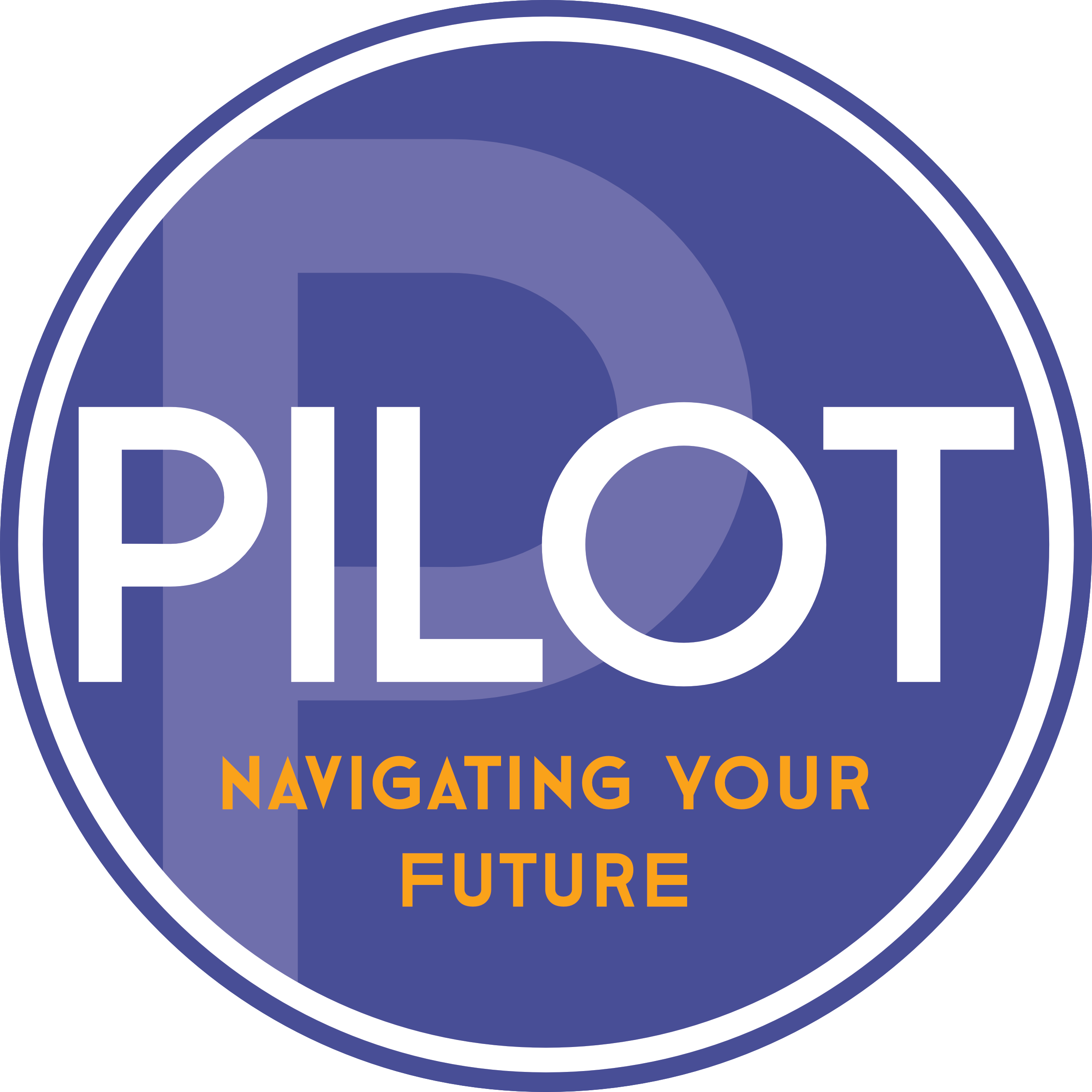 Pilot IMS Logo, National Training Provider @ Pilot IMS